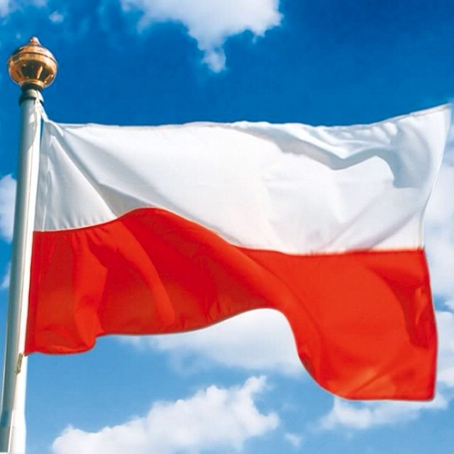 The Polish solar market has grown by 94 MW in 2016.